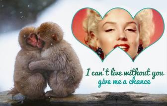 Collage mit zwei kleinen Affen
