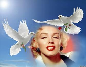 Fotoeffekt des Friedens mit zwei weißen Tauben fliegen