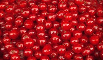 Stellen Sie eine rote Kirschen, um das Foto zu finden.