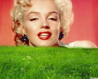 Bilderrahmen für grünes Gras in Ihrem Foto.