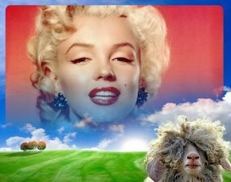 Fotomontage mit einem Schaf und einer grünen Wiese Hintergrund.