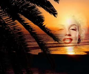 Setzen Sie Ihr Foto online zu einem Sonnenuntergang in einer idyllischen Landschaft von einem Strand
