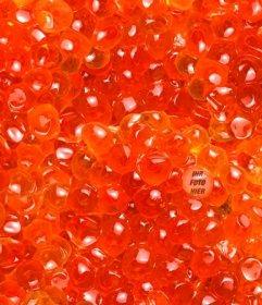 Spielen Sie, um das Foto von diesem Lachskaviar finden
