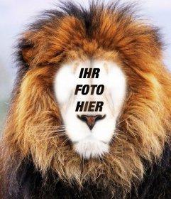 Fotomontage eines Löwen Ihr Gesicht zu setzen Online-