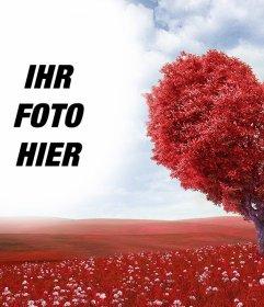 Foto Wirkung einer Landschaft mit einem Herz-Baum