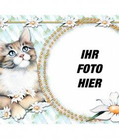 Fotomontage, um das Foto mit einem niedlichen Kätzchen setzen