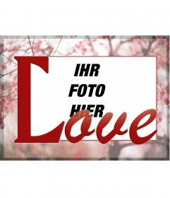 Rahmen Sie Ihr Foto auf dem Hintergrund der Kirschblüten und dem Wort LOVE