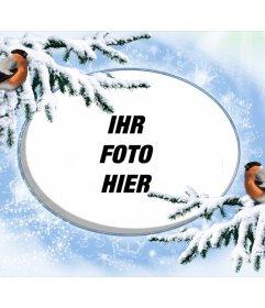 Snowy-Fotorahmen für personalisieren mit zwei Birdies.