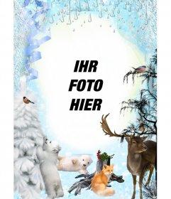 Winter-Fotomontage mit mehreren Tieren.