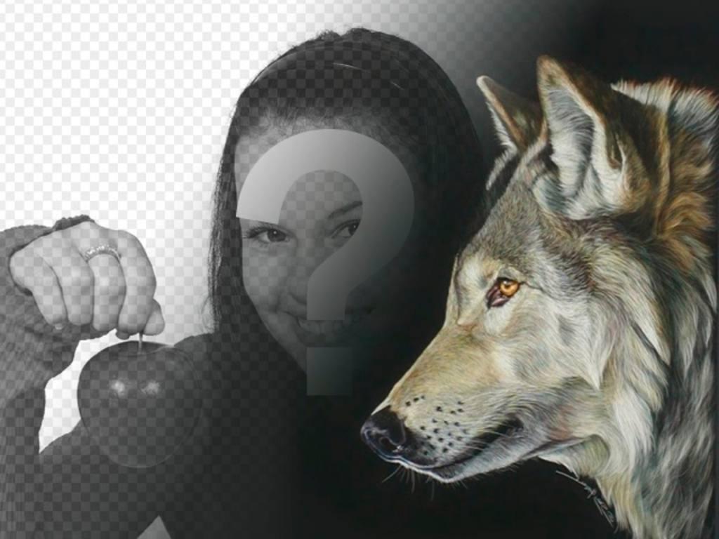 Fotomontage mit einem Bild von einem Wolf zu Collagen mit Ihren eigenen Bildern und Phrasen zu machen