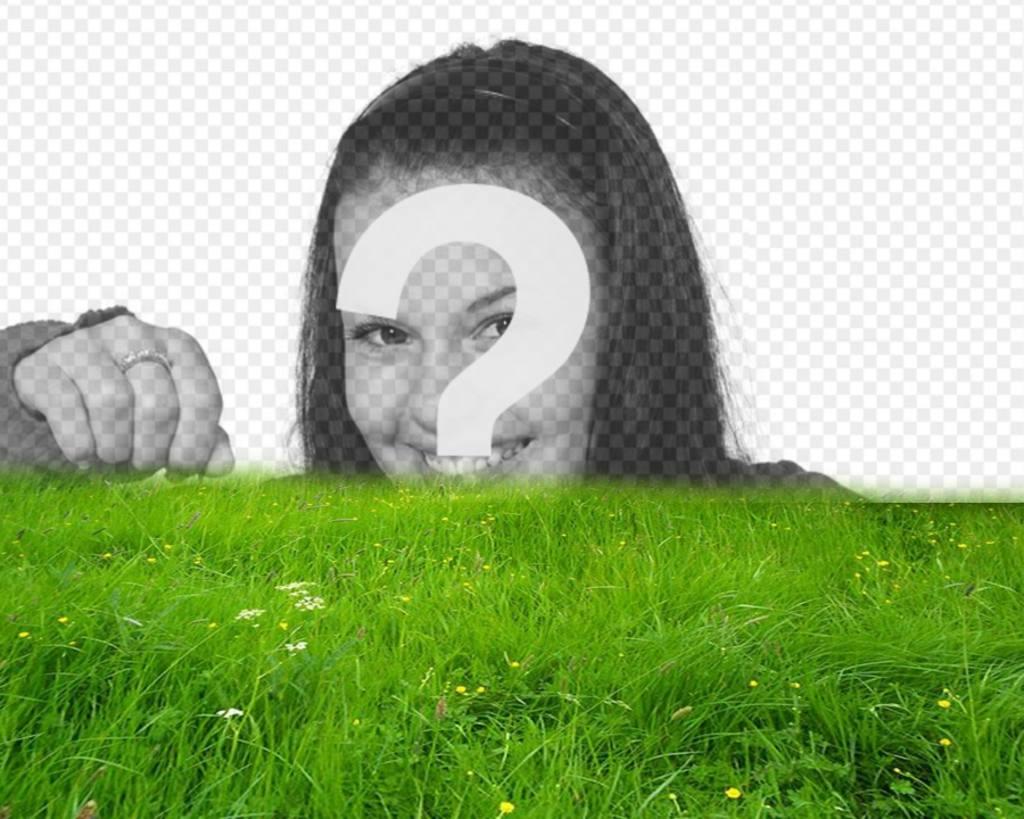 Bilderrahmen für grünes Gras in Ihrem Foto