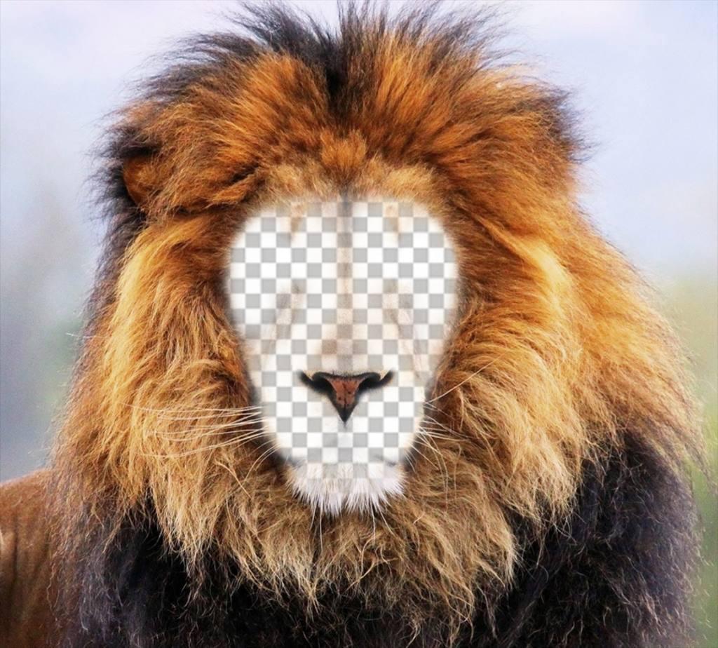 Fotomontage eines Löwen, um dein Gesicht online zu stellen