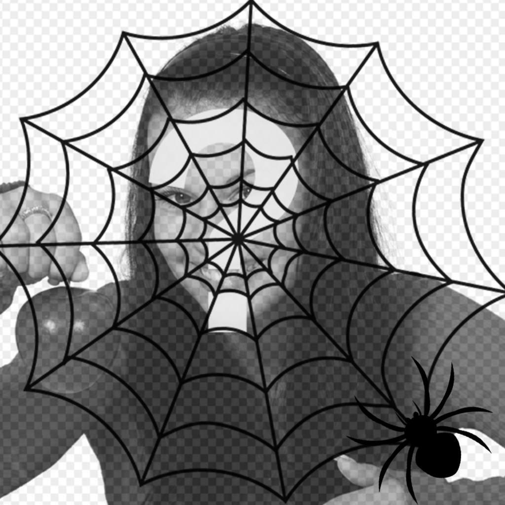Setzen Sie ein Spinnennetz und eine Spinne in Ihr Foto, Terroreffekt