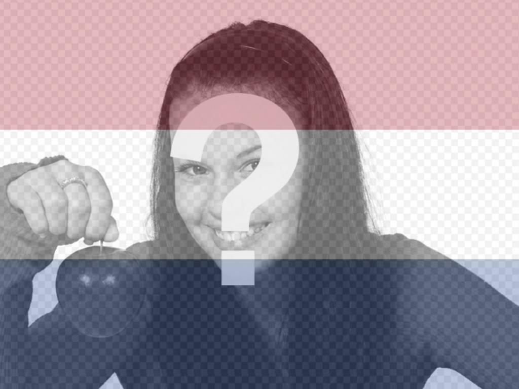 Fotocollage, wo Sie die Flagge von Holland zusammen mit Ihrem Foto