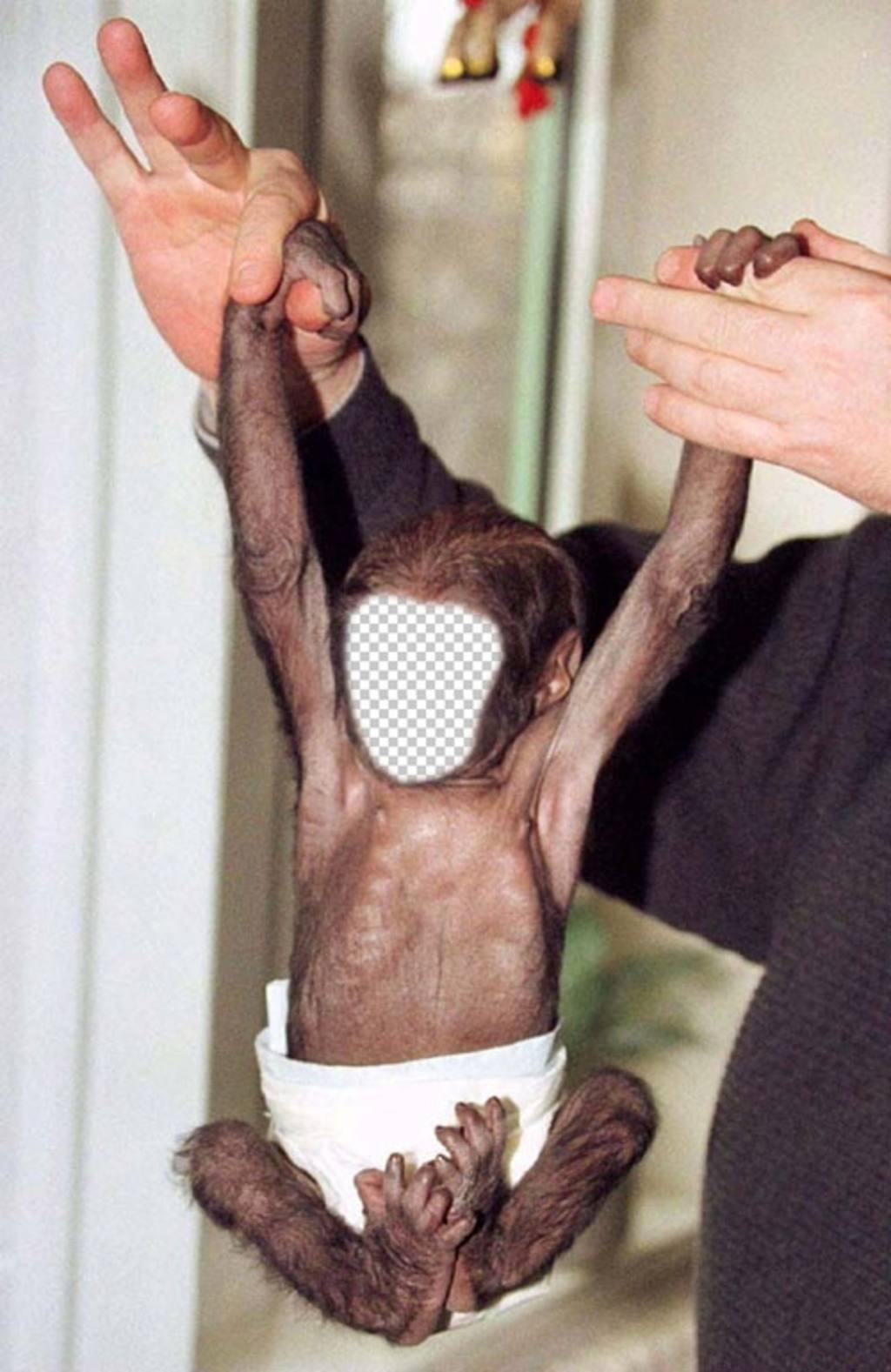 Halterung für Fotos, wo Sie ein kleiner Affe